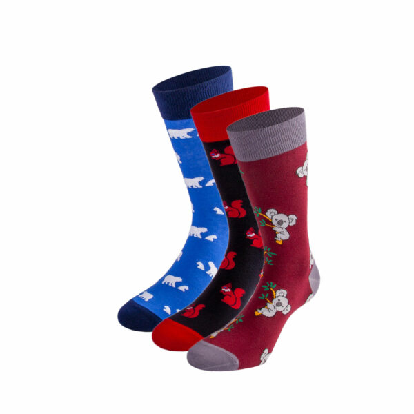 Mehrfarbiges lustiges Socken Bundle mit koala, Eisbär und Eichhörnchen Socken von PATRON SOCKS