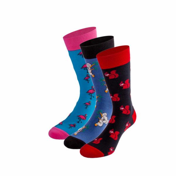 Mehrfarbiges lustiges Socken Bundle mit koala, Flamingos und Eichhörnchen Socken von PATRON SOCKS
